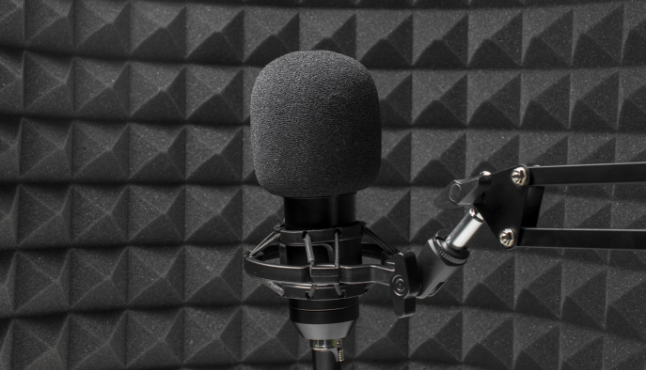 professional-microphone-front-acoustic-isolation-foam